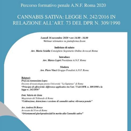 evento anf roma